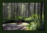Parkside Campground & RV Park