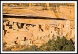Cliff Palace Ruins