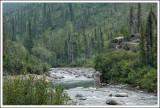 Marion Creek, Arctic Circle in Alaska...