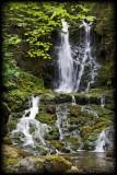 Chutes Dickson Falls