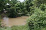 Footbridge to rice paddy, Xieng Kouang Prov. Laos