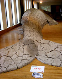 Gray Whale sculpture, the tail end
