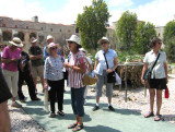 A guided tour of the Botanical Gardens