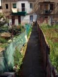 El Besos: zona verde