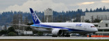 787 ALL NIPPON AIRWAYS