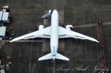 787 wings