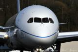 Portrait of 787 Dreamliner