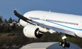 Beautiful 787 Wing