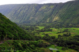 farms in Waipio valley