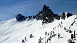 Bushwhack Peak
