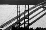 Tacoma Narrow Bridges