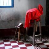 little red drum