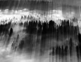shadows in unison