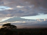 Kili in the morning-2769