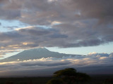 Kili in the morning-2772