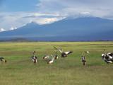Kenya December 2009