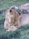 Kenya09-3335-LR.jpg