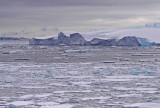 snow-petrel-habitat.jpg
