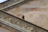 Sam at the Alte Nationalgalerie