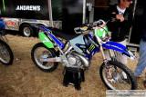 6K5E2006.jpg