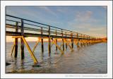 Aberlady Boardwalk