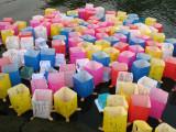 Group of Peace Lanterns