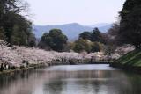 Sakura-lined moat and distant Suzuka range