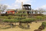 Yukitsuri in Amanohashidate View Land