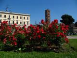 Flowers on Piazza della Verità
