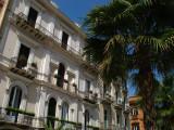 Palm and facade on Piazza della Libertà