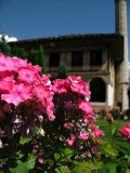 Courtyard flowers, Colored Mosque