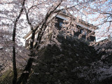 Kameyama-jō (Mie) 亀山城