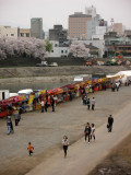 Hanami season activity and the city beyond