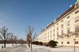 Rathaus - Hofburg