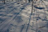 01/22/2010 - _MG_5403.jpg