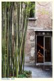 Bamboo Boutique