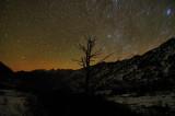 Star  Trails . . .