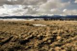 Corral on the Montana prairie
