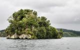 An island on Lake Rotoiti