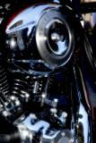 Harley 2.jpg