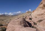 Calico Panorama 2
