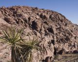 Ancient Sand Dunes