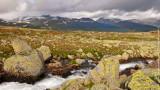 The Realm of Norwegian Troll /rainbow/
