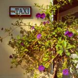 TAXI sign, Avalon, St.Catalina Islland, CA, USA