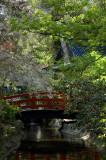 Descanso Gardens - 04/04/09