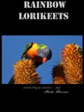 PARROT BOOK.jpg