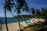 Sri Lanka Slides