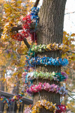 dummie tree 700.jpg