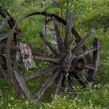 wheel 900.jpg