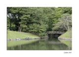 Hamarikyu Onshi Teien (Garden)